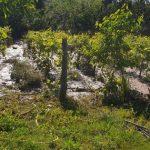Inundații la Poiana. Primarul Bârcă cere sprijinul Prefecturii Gorj