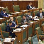 Cârciumaru: Să nu disperăm, PSD REVINE în 2020! Iriza: SUSȚIN guvernul PNL