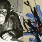 55 de picturi realizate de cimpanzeul Congo vor fi vândute pentru o sumă uriaşă