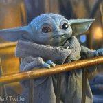 Baby Yoda, vedetă pe internet