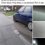 09:32 Brănescu anunță că plantează flori în gropile de pe șosea