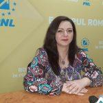 """Denisa Șuță, noul MANAGER al Centrului Brâncuși. """"Sunt optimistă că vom face din această instituție una SIMBOL"""""""