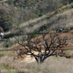 Kobe Bryant, identificat oficial printre victimele accidentului de elicopter