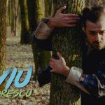 Liviu Teodorescu feat. BRUJA - Cerule