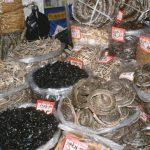 Scene de coșmar la târgul de animale din Wuhan, unde s-au vândut liliecii purtători de coronavirus