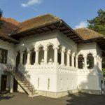 SCANDALUL Muzeul Brâncuși. PSD Gorj neagă acuzațiile lansate de liberali