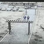15:08 Criminaliștii, la Primăria Drăguțești. Moșoiu: Oamenii sunt panicați