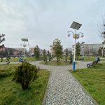 15:24 Sute de arbori plantați în Rovinari