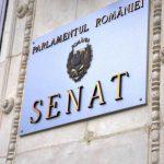 19:09 Senatul a respins majorarea etapizată a alocațiilor copiilor