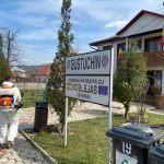 Primarii, în vremea PANDEMIEI: dezinfecții și cumpărături pentru vârstnici
