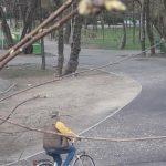 Davițoiu, pozat de Belgher pe bicicletă, în parc. Cum explică