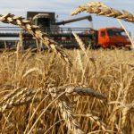 07:28 Rusia îşi suspendă exportul de cereale până la 1 iulie