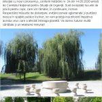 10:11 Parcurile din Târgu-Jiu, REDESCHISE