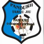 Clubul Pandurii Târgu-Jiu, EXCLUS din campionat