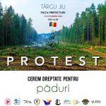16:04 Protest împotriva defrișărilor ilegale