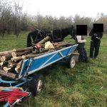 09:24 Prinși la furat de lemne