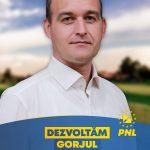 Vîlceanu, despre scenariile lui Ivăniși: PSD vrea să mai adune câteva voturi de pe urma fricii
