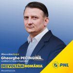 Pecingină: În PER s-au strâns toate scursurile din PSD