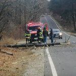 15:00 Arcani: A intrat cu mașina într-un copac doborât de vânt
