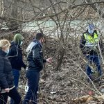 Câini morți la Arcani. Poliția face anchetă