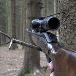 10:28 Vânători din Târgu-Jiu rămași fără arme, muniție și telefoanele mobile. IPJ Gorj face cercetări pentru braconaj