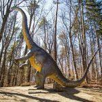 Cel mai înalt dinozaur din sud-estul Europei, expus la Dino Parc Râşnov