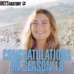 """ABC a anunţat că va lansa sezonul 18 al serialului """"Grey's Anatomy"""""""