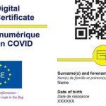 13:00 Românii vor descărca certificatul verde de vaccinare de pe un portal securizat al STS